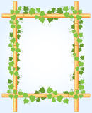 Ivy Around Bamboo Border illustration de vecteur