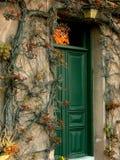 Ivy around old door stock photo