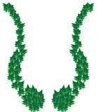 Ivy border frame. An Ivy border frame with a strange shape Stock Photo