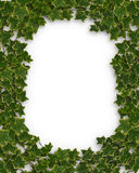Ivy Border or frame 3D Royalty Free Stock Photos