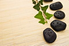 Ivy branch and spa stones. Arranged on bamboo board royalty free stock image