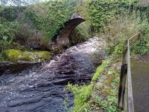 The Ivy Bridge over River Erme royalty free stock image