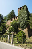 Ivy on castle tower. Ivy on old italian castle tower Stock Images