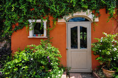 Ivy clad in colourful house Royalty Free Stock Photos