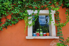 Ivy clad and cup of coffee decorations. Ivy clad on the orange wall and cup of coffee decorations Royalty Free Stock Photography