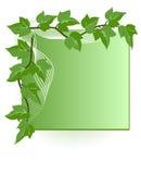 Ivy Corner Element Stock Image