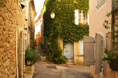 Ivy corner of Provence Stock Photography