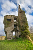 Ivy covered castle Royalty Free Stock Images