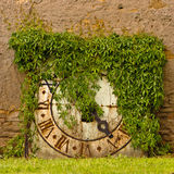 Ivy covered clock. Ivy covered old and rusted clock Stock Images