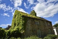 Ivy Covered Cottage in giardino alla bella casa di campagna vicino a Leeds West Yorkshire che non è la fiducia nazionale fotografia stock libera da diritti