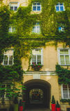 Ivy-Covered Courtyard Vienna Stock Images