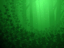 Ivy covered forest. Enchanted forest and ivy grove illustrated background Stock Photography