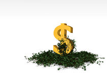 Ivy dollar Royalty Free Stock Photo