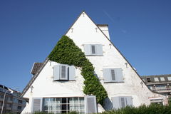 Ivy facade. House with white gables is covered with ivy royalty free stock images