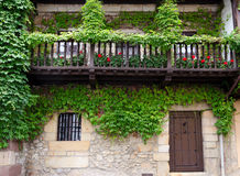 Ivy on the Facade. Ivy-covered facade of a typical house in northern Spain Royalty Free Stock Photo