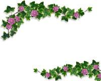 Ivy Floral design border Stock Image