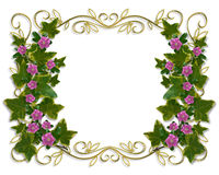Ivy Floral design border with gold frame Stock Image
