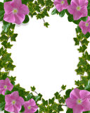Ivy Floral design card or invitation Royalty Free Stock Photography