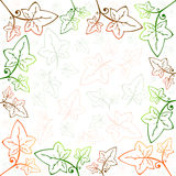 Ivy Frame and Background Royalty Free Stock Image
