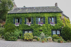 Ivy green house. Front view of an old, big and nice house full of ivy in brittany france Stock Photo
