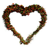 Ivy Heart Stock Photos