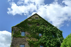 Ivy house. A house covering by green ivy, shooting in Rothenburg, Germany Royalty Free Stock Photo