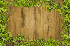 Ivy leaf frame on plank wood wall Stock Photo
