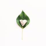 Ivy Leaf And Stone Heart no fundo branco Imagem de Stock