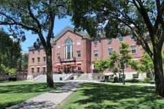 Ivy League - brunt Uni Royaltyfri Foto