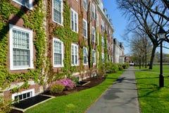 Ivy League Stock Photo