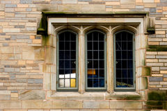 Ivy League window Stock Photo