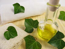 Ivy oil Stock Images