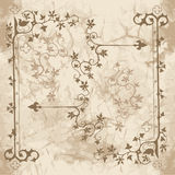 Ivy ornaments for design Royalty Free Stock Photo