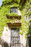 Ivy Over Iron Scrollwork. An old vine covered stone wall in a French village Royalty Free Stock Photography