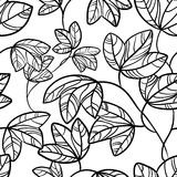 Ivy  pattern Royalty Free Stock Photos