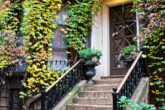 Ivy plants on old home. Ivy plants surrounding old Victorian doorway of home in Beacon Hill, Massachusetts, U.S.A Stock Photography