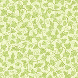 Ivy plants seamless pattern background Royalty Free Stock Image