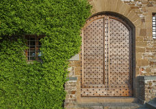 Ivy and retro wooden door Royalty Free Stock Images