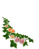 Ivy Roses Floral Border Invitation Royalty Free Stock Images