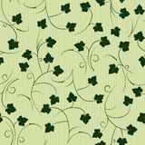 Ivy - seamless pattern Royalty Free Stock Photos