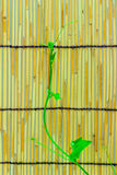 Ivy shoots on  Japanese bamboo blind Royalty Free Stock Image