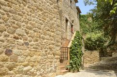 Ivy on stone alley  in Pals. Stone house in charming street  in the medieval village of Pals, located in the middle of the Emporda region of Girona, Catalonia Royalty Free Stock Photos