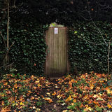 Ivy surrounded garden gate with Autumn leaves. Stock Photography