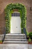 Ivy Surrounding Front Door stock afbeeldingen