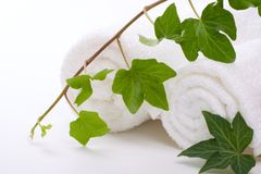 Ivy and towels Stock Images