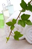 Ivy and towels Stock Photography