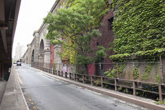 Ivy and tree in lower manhattan under road towards brooklyn brid Royalty Free Stock Images