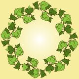 Ivy vector hand drawn round frame. Climbing and ground-creeping woody plant Royalty Free Stock Image