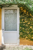 Ivy and white door with yellow wall Royalty Free Stock Photo