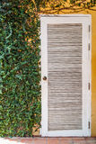Ivy and white door with yellow wall Royalty Free Stock Images